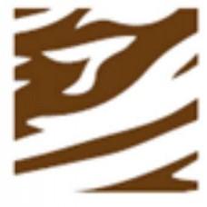 Переводной лист Зебра